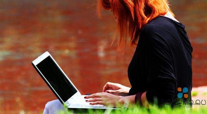 Прибыльный заработок в сети Интернет для новичков