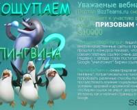 penguin2.bizzteams.ru: конкурс на 10 000$ и 6 номинаций